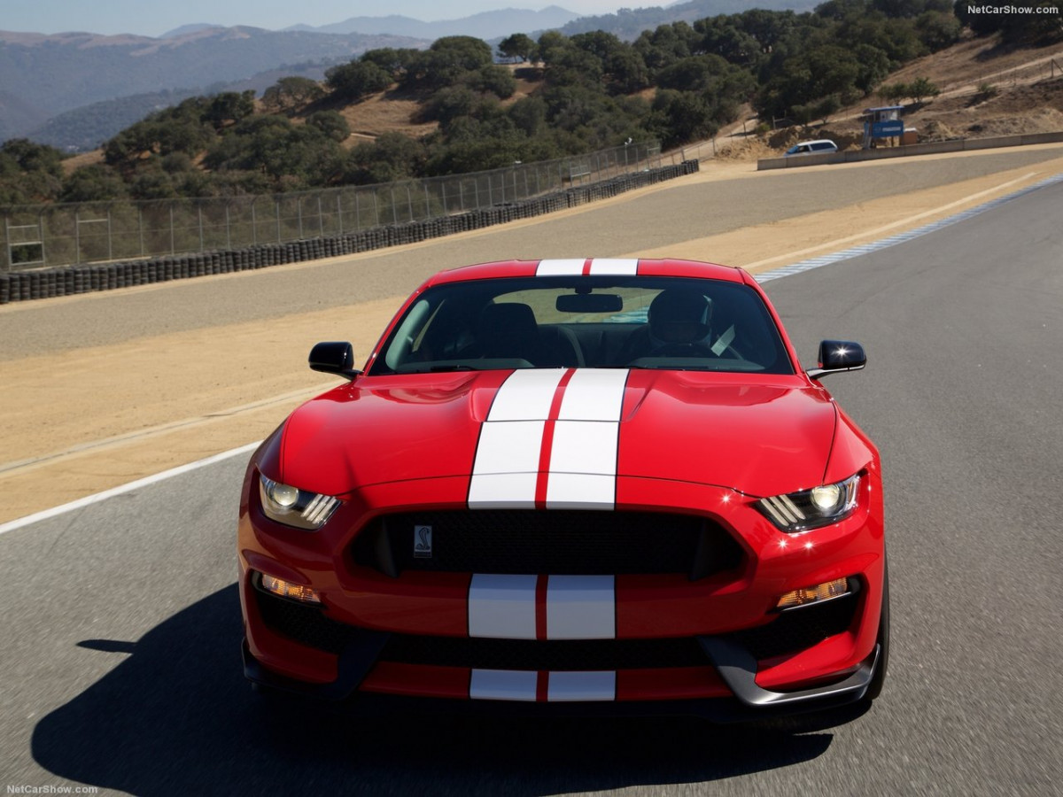 Ford Mustang Shelby GT350 фото 156018