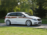 Mercedes-Benz B-Class E-CELL Plus фото