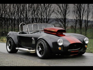 Weineck Cobra 780 cui Limited Edition фото
